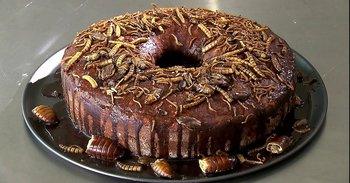 Resultado de imagem para bolo de insetos