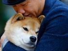 'Cão mais feliz' do Japão tem mais de 2 milhões de seguidores no Instagram