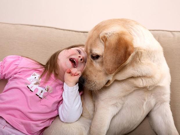 Projetos de terapia assistida por animais são realidade em hospitais infantis nos EUA: agora, o projeto está sendo usado também no Brasil (Foto: Reprodução)