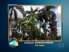 Morador flagra iluminação pública acesa durante o dia em Sete Lagoas
