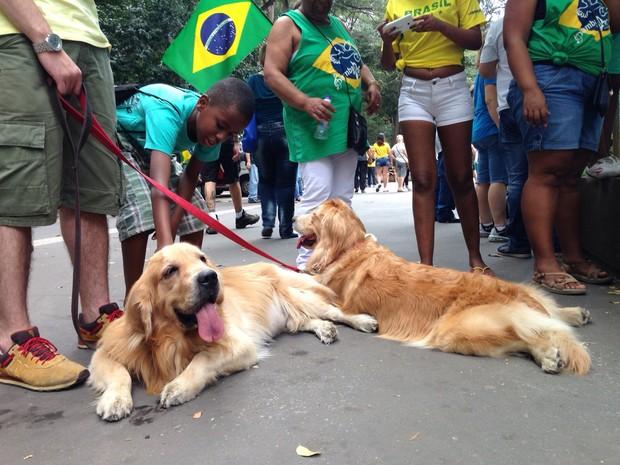 Cachorros na manifestação da Avenida Paulista neste domingo (Foto: Paulo Toledo Piza/G1)