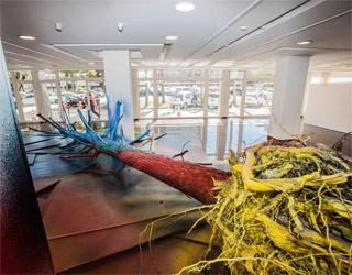 Sticks in a Shop (Foto: Divulgação)