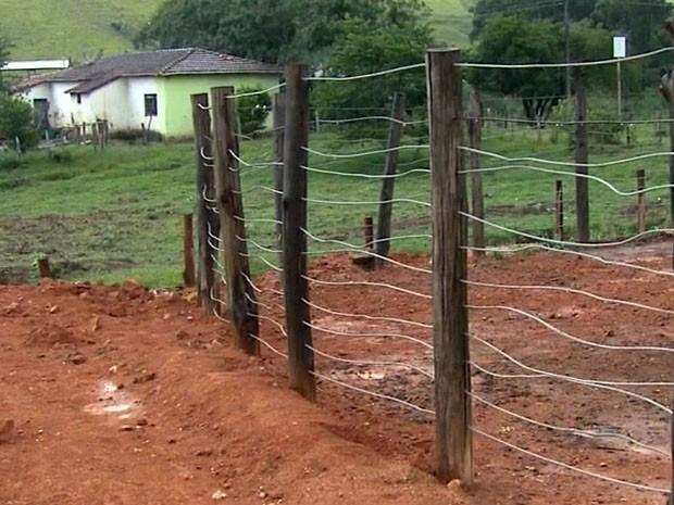 Jovem morre ao ser pisoteado por boi em Monte Sião, MG (Foto: Reprodução EPTV)