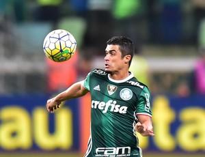Egidio Palmeiras America (Foto: Marcos Ribolli)