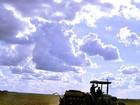 Plantio se intensifica em Sorriso (MT), a maior produtora brasileira de soja