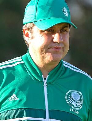 Gilson Kleina treino Palmeiras (Foto: Leandro Martins / Futura Press / Agência Estado)