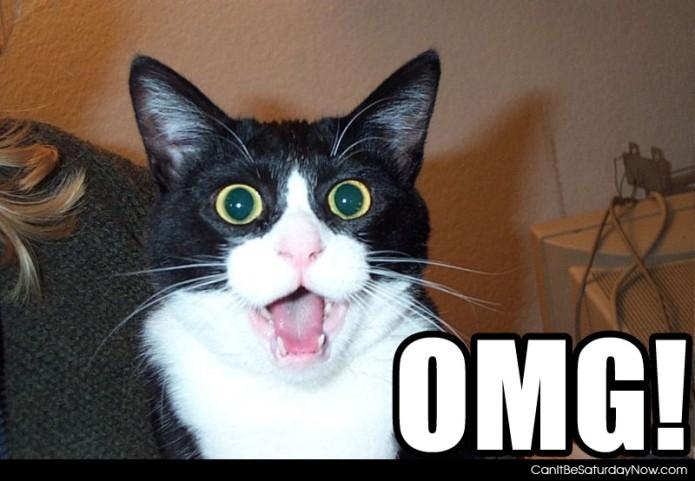 """""""OMG"""" expressa surpresa ou espanto (Foto: Reprodução/Canlt Be Saturday Now) (Foto: """"OMG"""" expressa surpresa ou espanto (Foto: Reprodução/Canlt Be Saturday Now))"""