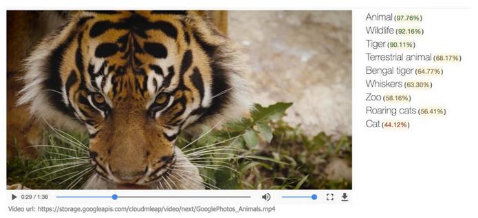 Pesquisa dentro de vídeos encontra substantivos e verbos (Foto: Divulgação/Google)