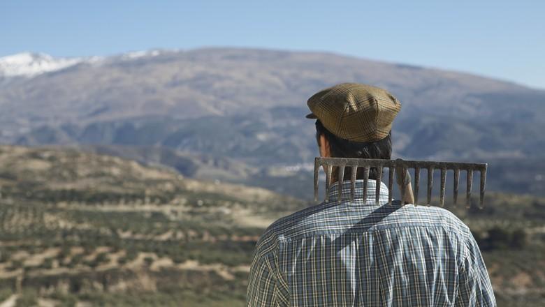 crônica-fazendeiro-campo (Foto: Thinkstock)