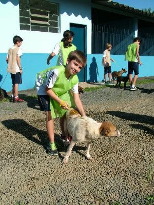 Animais envolvidos no projeto não apresentam riscos para a saúde dos alunos (Foto: Divulgação)