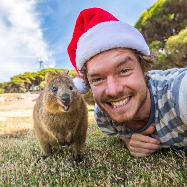 Allan Dixon e um quokka em Rottnest Island no sul da Austrália  (Foto: Reprodução Instagram)