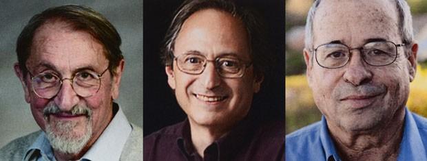 Da esquerda para a direita, Martin Karplus, Michael Levitt e Arieh Warshel (Foto: AFP PHOTO / TT NEWS AGENCY / CLAUDIO BRESCIANI)