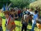 Índios suruí concluem 1ª venda de créditos de carbono indígenas do país