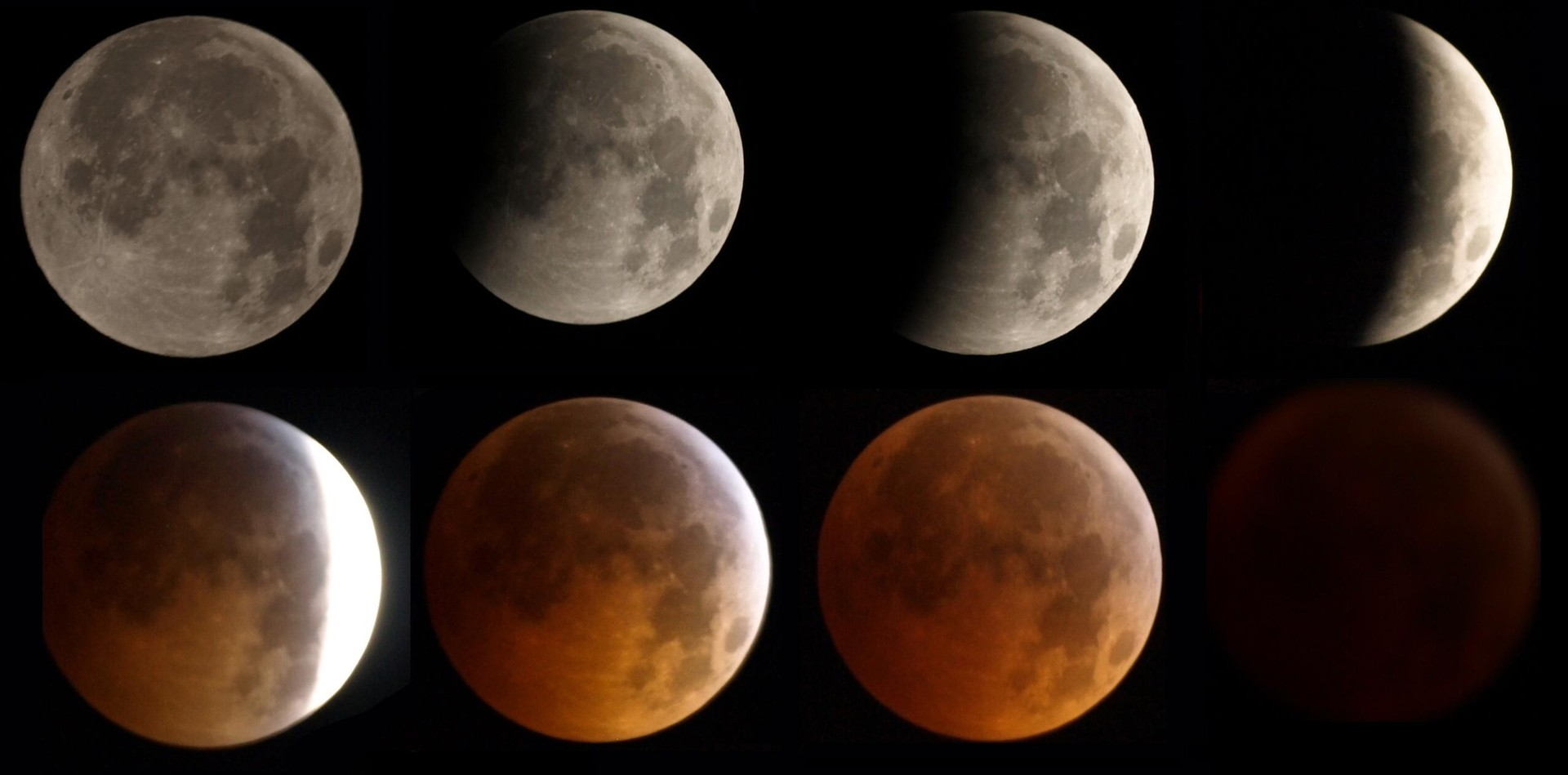 As fases de um eclipse lunar completo (Foto: Nasa)
