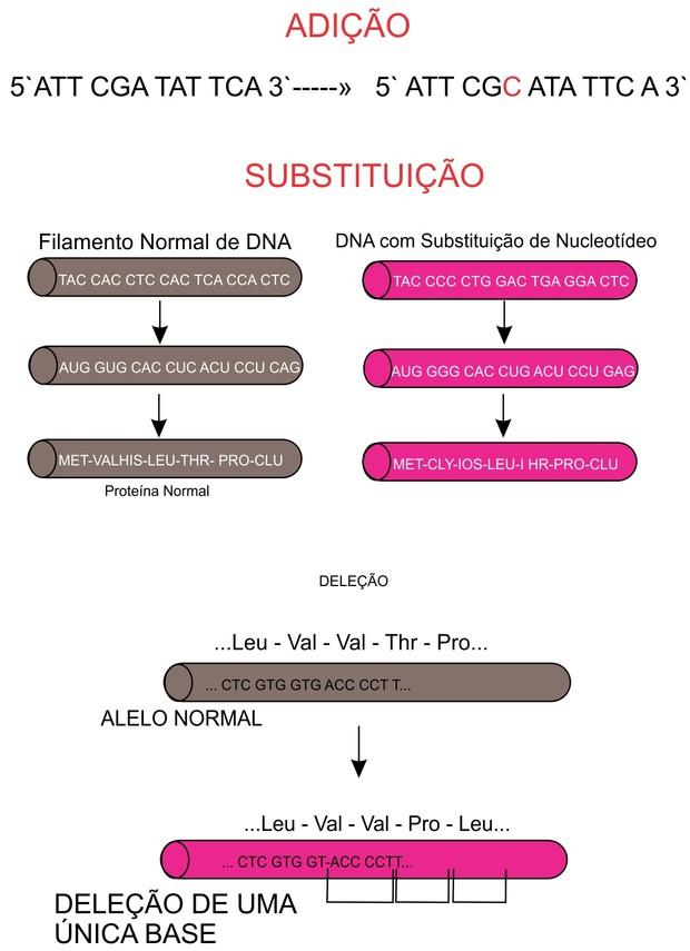 Figura 1 - Tipos de mutações gênicas (Foto: Reprodução/Colégio Qi)