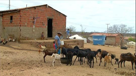 Agricultores do RN afetados pela seca esperam pelo pagamento de seguro