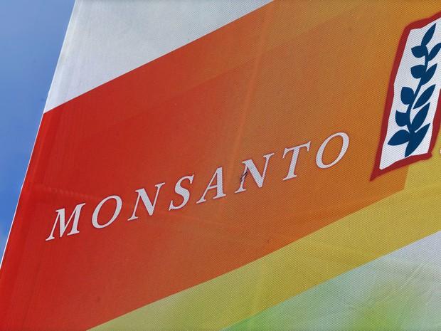 Monsanto domina o setor de sementes transgênicas de milho, trigo e soja. (Foto: AP)