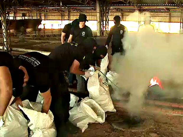 Droga foi incinerada na manhã desta quarta-feira (22) em Rio Branco  (Foto: Reprodução/Rede Amazônica Acre)
