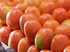 Sistema de cultivo gera tomate mais saudável e ajuda o meio ambiente