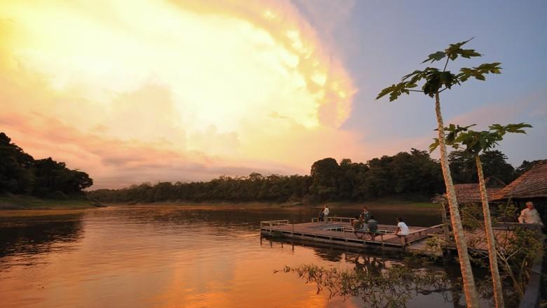 reserva- mamirauá-amazonas-tefé (Foto: Flickr/ Peter Schoen)