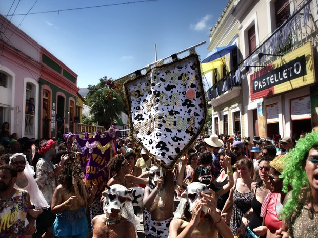 Bloco feminista Vaca Profana propôs reflexão sobre assédio e machismo (Foto: Beto Figueiroa)