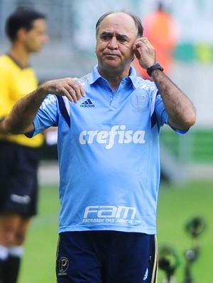 Palmeiras x Linense Marcelo Oliveira (Foto: Marcos Ribolli)