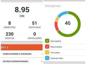 Ferramenta organiza dados em gráficos e permite uma análise detalhada do desempenho do estudante (Foto: Reprodução/eNotas)