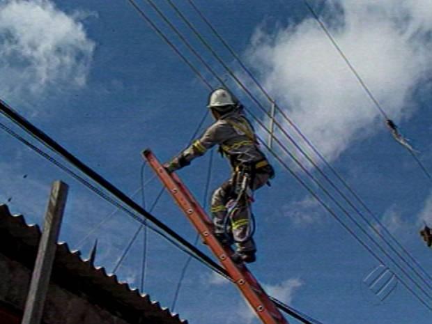 Mais de 1,8 mil residências são atendidas pela Celpa no Pará (Foto: Reprodução/TV Liberal)