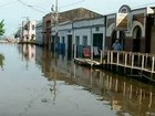 Defesa Civil do Pará divulga balanço parcial das cheias no oeste do estado
