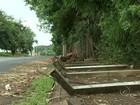 Alambrado do Bosque Municipal cai e preocupa moradores em Rio Preto