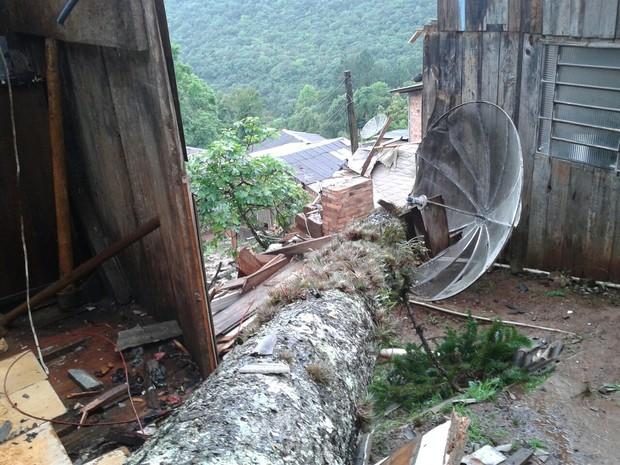 Árvore mata mulher em Gramado RS (Foto: Corpo de Bombeiros/Divulgação)