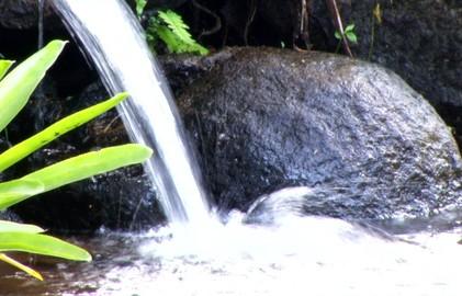 Moradores de distrito de Resende estão consumindo água imprópria (Reprodução/TV Rio Sul)