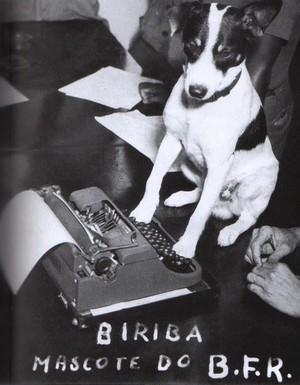 Biriba Mascote Botafogo, década de 40 (Foto: Facebook)