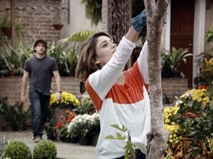 Bento flagra Amora podando árvore (Foto: Sangue Bom/TV Globo)