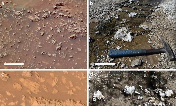 Estruturas com origem biológica no deserto do Atacama são muito parecidas com formas encontradas em Marte (Foto: reprodução)