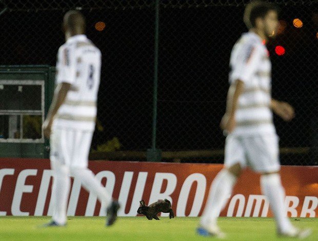 JMalucelli x Vitória (Foto: Hedeson Alves/VIPCOMM)