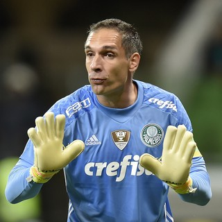 Fernando Prass Palmeiras X Fluminense (Foto: Mauro Horita)