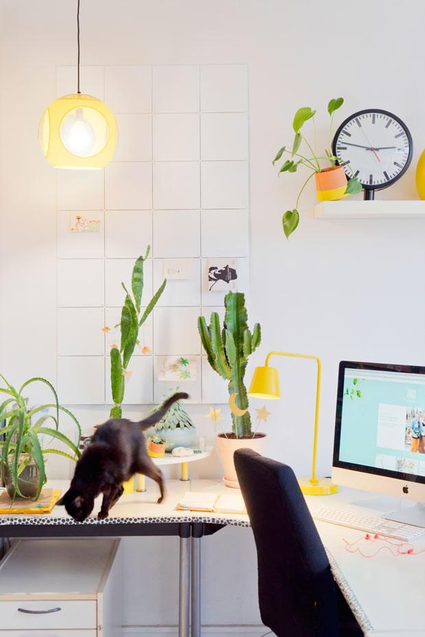 Para quem tem crianças e pets em casa é preciso atenção na hora de escolher quais plantinhas levar para casa, afinal algumas delas podem ser tóxicas (Foto: Judith de Graaff | JOELIX.com)