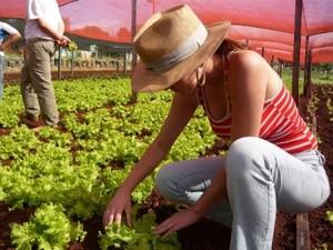 Agricultores têm até dia 23 parainscrições no Pronae em Bom Despacho (Foto: Prefeitura/ Divulgação)