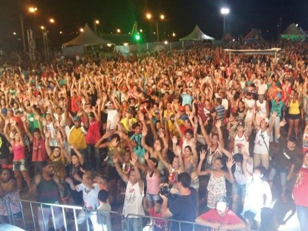 Foliões de toda região compareceram em festa de Paranapanema (Foto: Adolfo Lima/TV TEM)