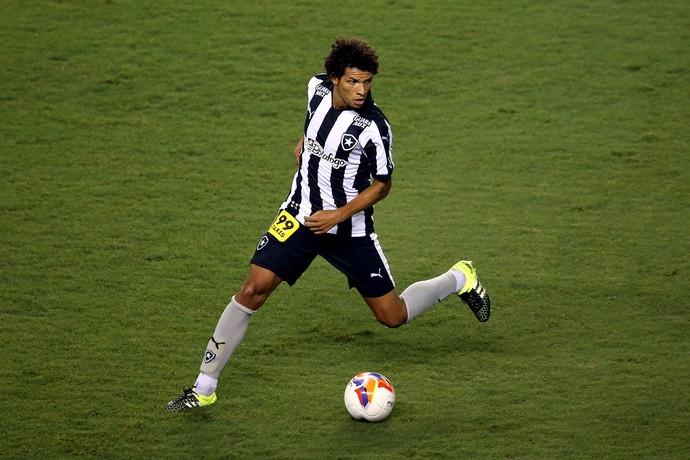 Willian Arão Botafogo x Paraná (Foto: Vitor Silva/ SSPress)