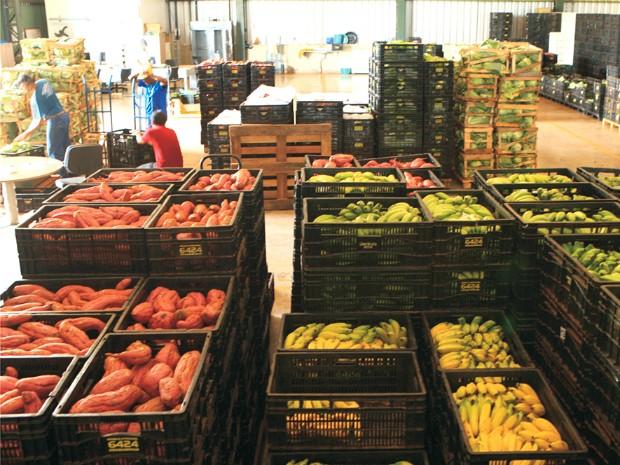Agricultura Familiar (Foto: Prefeitura de Uberlândia/Divulgação)