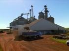 Agricultores investem na construção de armazéns coletivos no Paraná