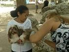 Campanha de vacinação antirrábica lota postos de atendimento em Belém