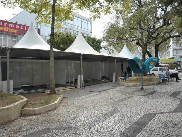 Recanto do Pinhão abre oficialmente neste sábado (18), em Lages (Foto: Festa do Pinhão/Divulgação)