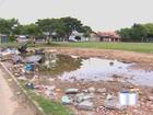 Enfeites de natal acumulam água e geram risco de dengue em S. José