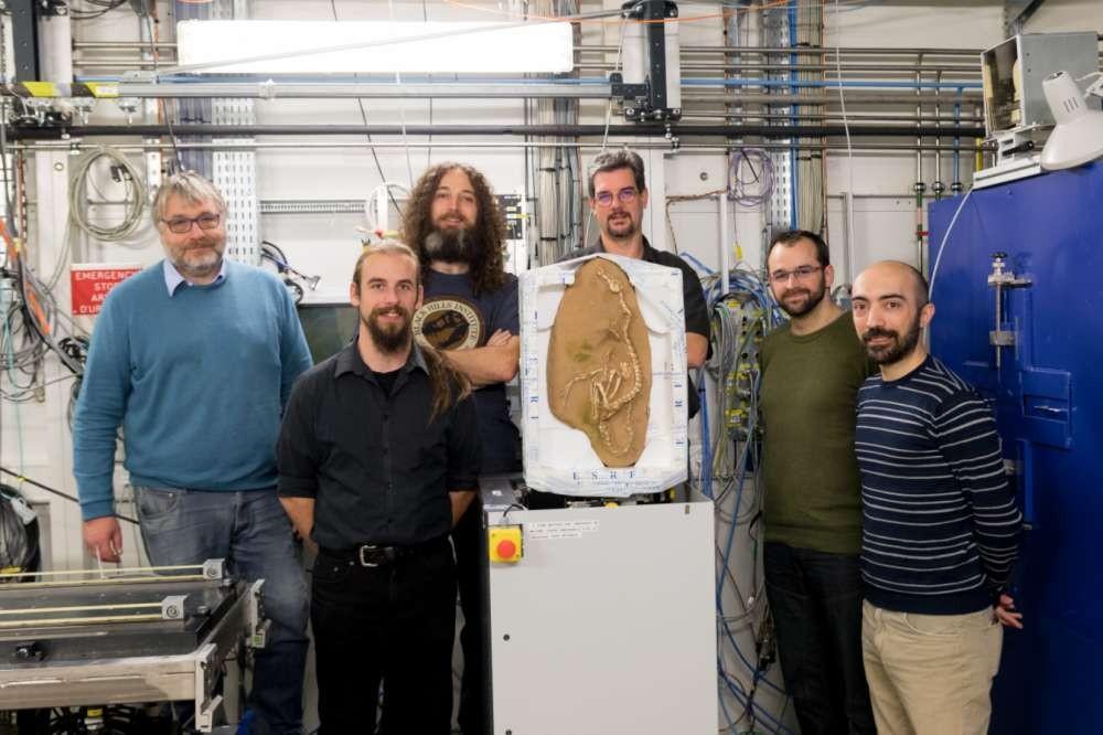 Equipe de pesquisadores com o fóssil (Foto: Divulgação)