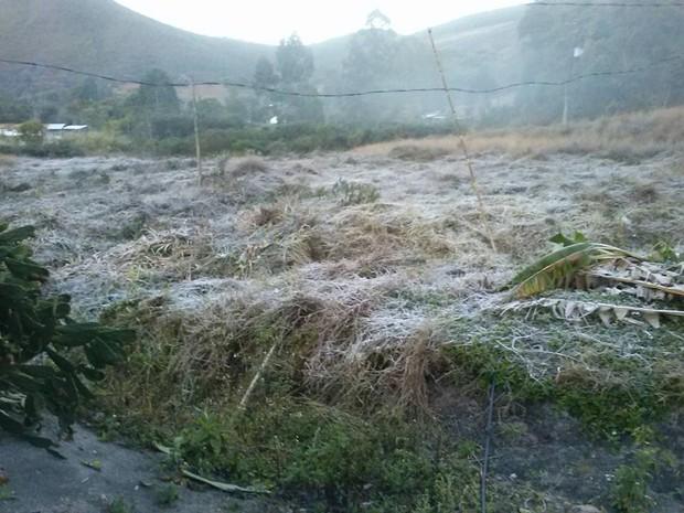 Geada cobriu vegetação na localidade de Rio Grande de Cima (Foto: Joyce Rimes)