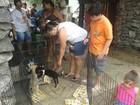 Campanha do 2º Natal Animal de São Vicente mobiliza moradores da cidade