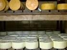 Produtores querem certificação para queijo artesanal de MS